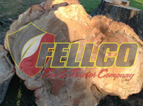 fellco-tree-and-tractor-tomball-tx-about-us
